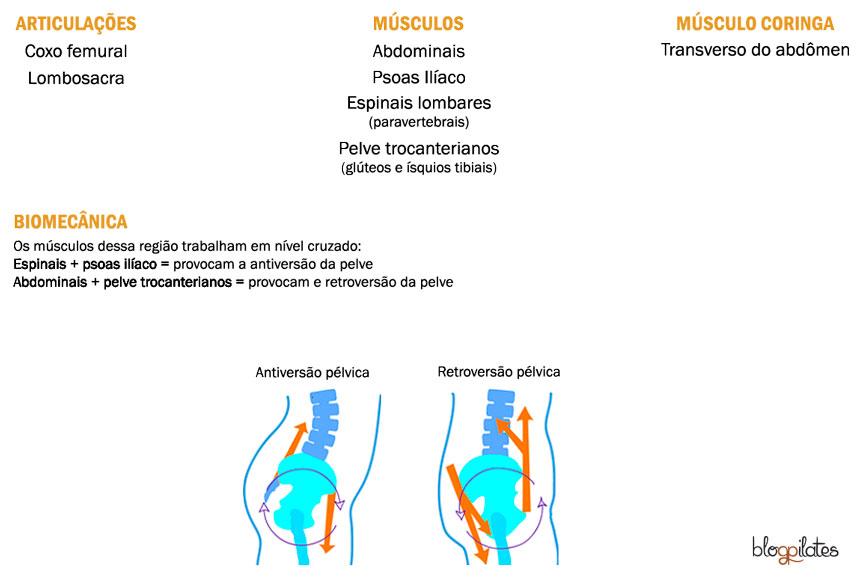 equilibrio-pelvico-no-Pilates