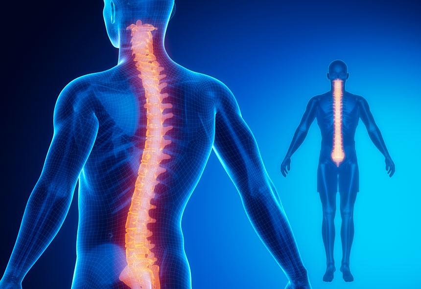 pilates para dor na coluna