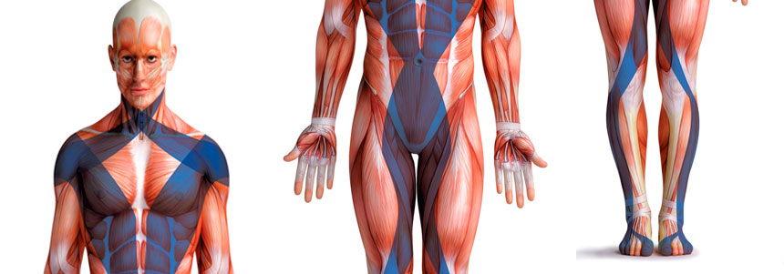 Pilates-para-Reabilitação-2