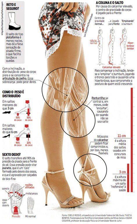 estrutura do pé (4)