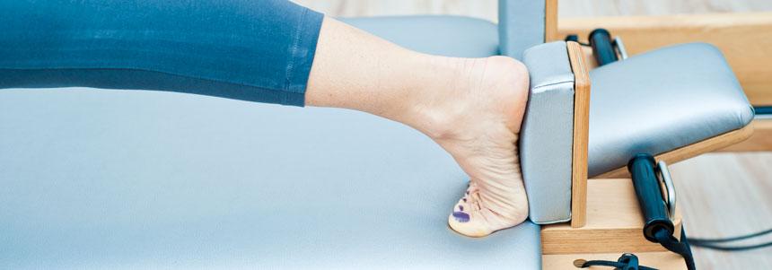 estrutura do pé (8)