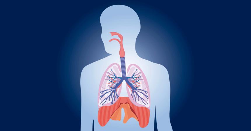 Como o Pilates pode ajudar o Sistema Respiratório