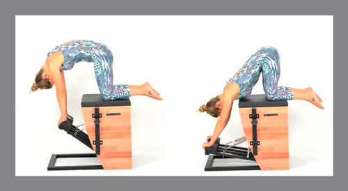 2)-The-Cat -Exercícios de Pilates na Step Chair