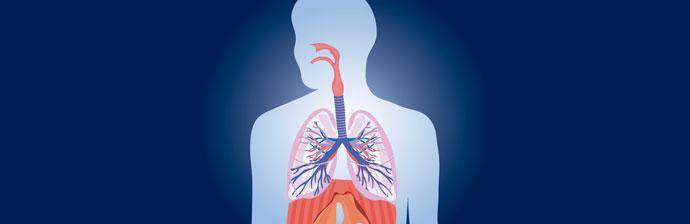 Benefícios-da-Asma