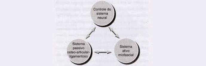 Análise-Biomecânica---Figura-2