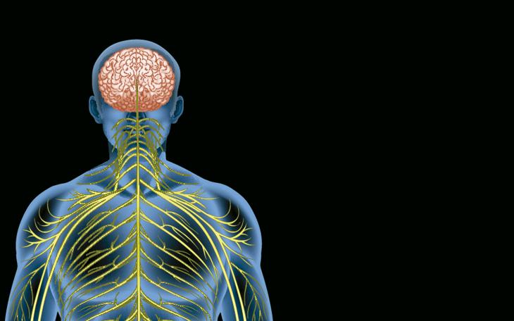 Método Pilates no Tratamento da Esclerose Múltipla