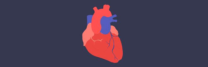 Doenças-Cardiovasculares-5