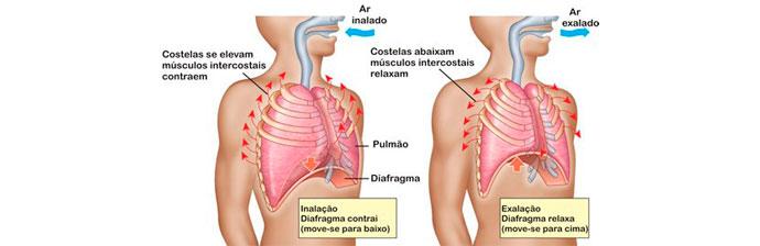 Efisema-Pulmonar-7