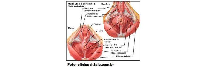 Incontinência-Urinária-Feminina-3