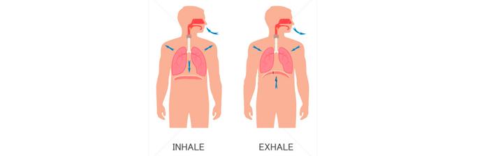 Biomecânica-da-Respiração-1