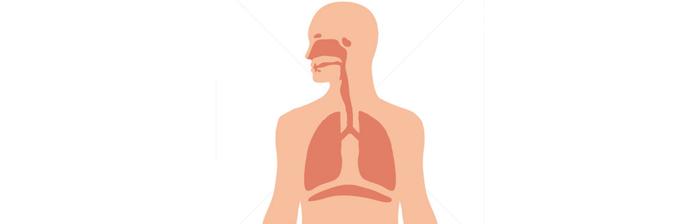 Biomecânica-da-Respiração-2