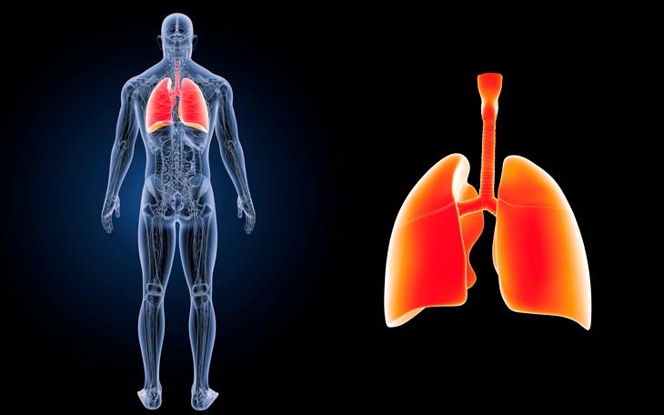 Padrão Respiratório Alterado em Pacientes com Dor Lombar