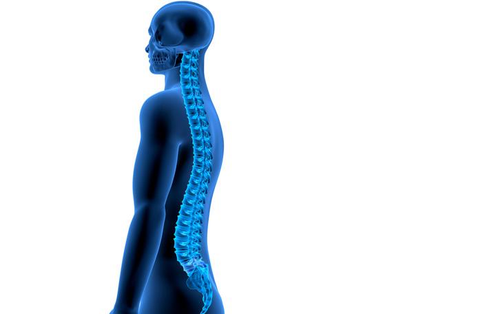 Método Pilates e a Estabilização Segmentar na Dor Lombar
