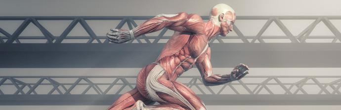 Pilates-no-Tratamento-da-Pubalgia-1