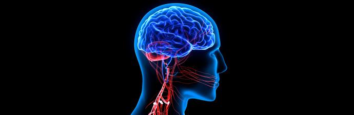 Disfunção-Neurológica-3