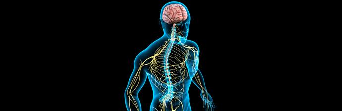 Disfunção-Neurológica-5
