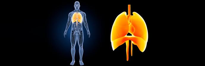 Transplante Pulmonar – Como o Método Pilates pode ajudar?