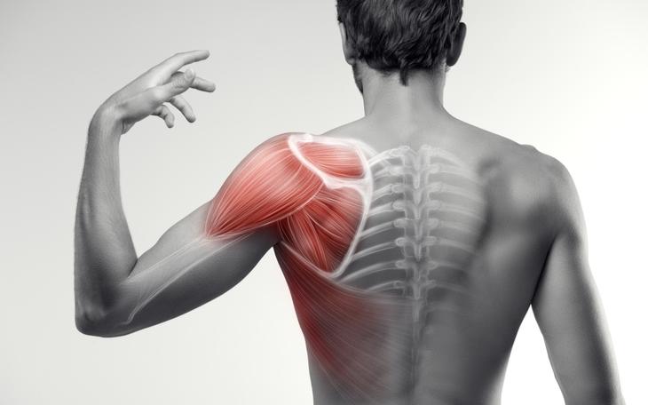 Patologias do ombro: Saiba como o Pilates pode auxiliar no tratamento