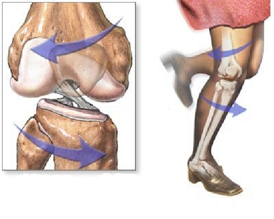pilates na reabilitação do ligamento cruzado posterior 1