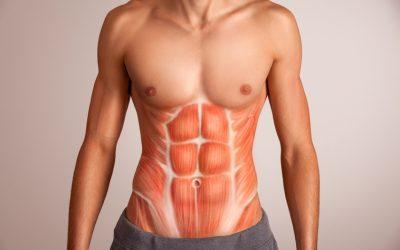 Transverso Abdominal e sua importância para a estabilização da coluna