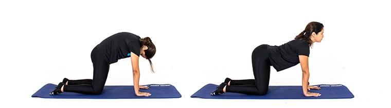 exercício-de-pilates-para-hipertensao-cat