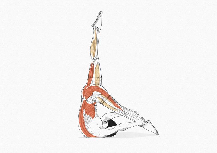 The Control Balance - exercícios originais de Pilates