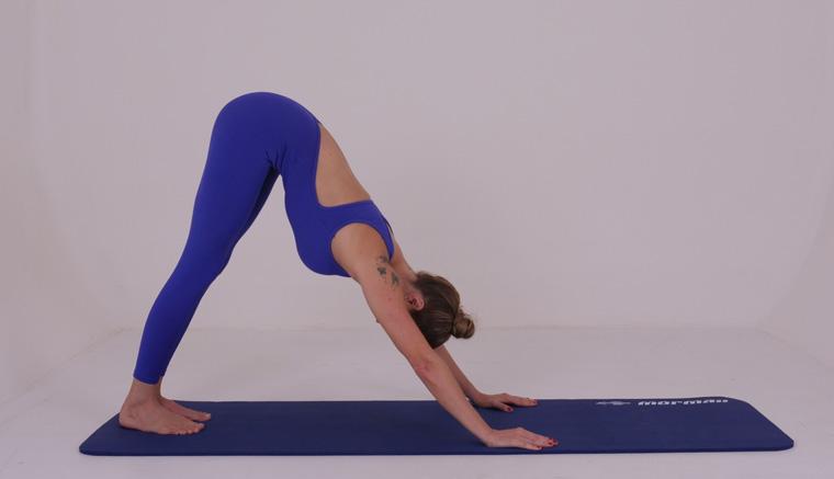 The Push Up - exercícios originais de Pilates