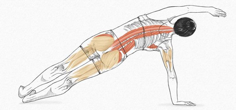 The Side Bend - exercícios originais de Pilates