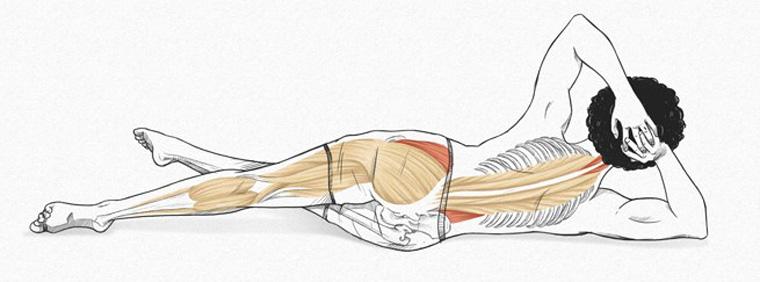 The Sidekick - exercícios originais de Pilates